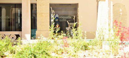 L'Antiquaille ECCLY reste ouvert tout l'été !